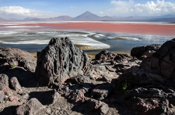 Laguna Colorada, Parque Nacional Uyuni, Bolivia.