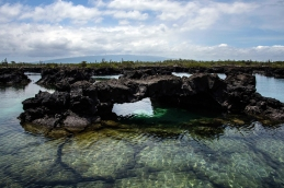 Galápagos 2018